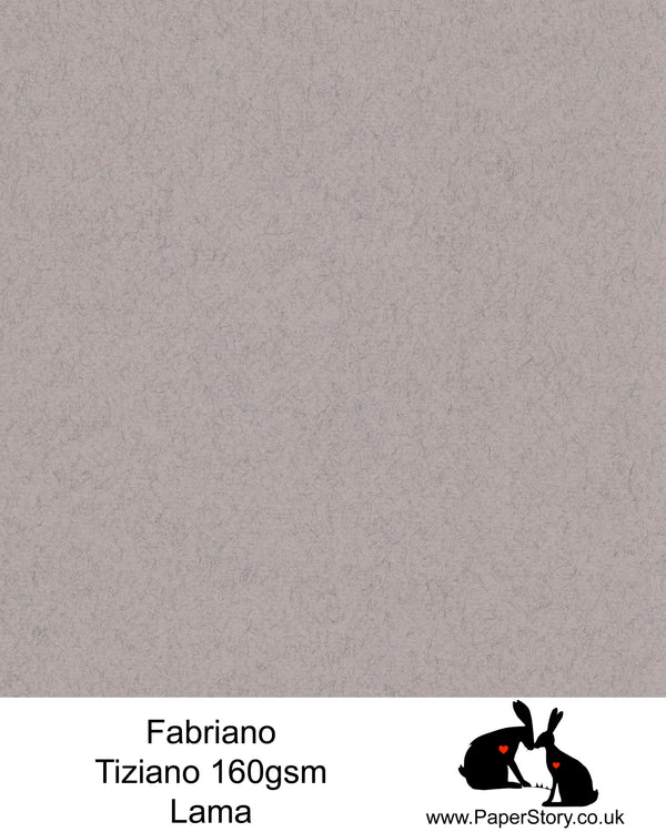 High quality paper from Italy, Lama felted textured soft grey with a hint of warmth. Fabriano Tiziano is 160 gsm, Tiziano has a high cotton content, a textured naturally sized surface. This paper is acid free to guarantee long permanence in time, pH neutral. It has highly lightfast colours, an excellent surface making and sizing which make this paper particularly suitable for papercutting