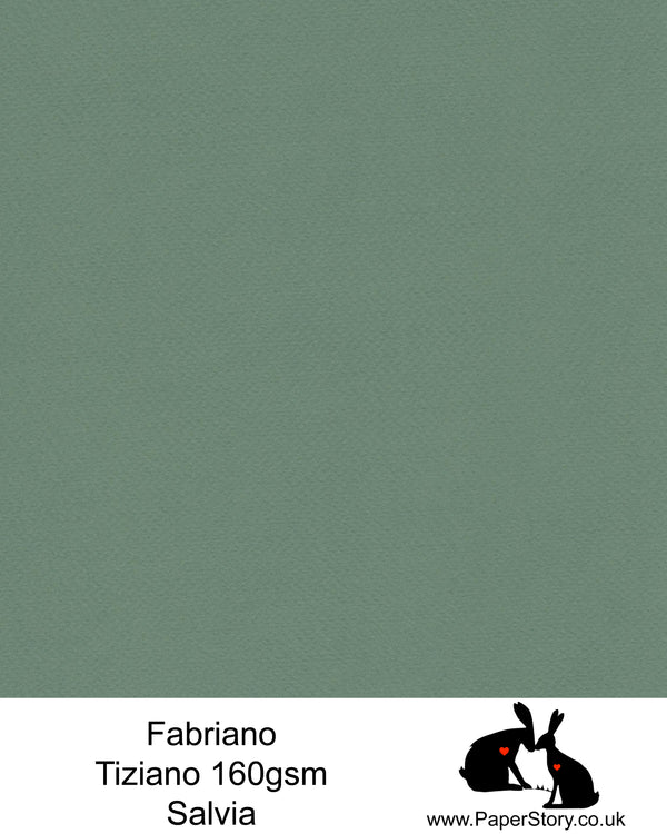 High quality paper from Italy, Salvia Green Fabriano Tiziano is 160 gsm, Tiziano has a high cotton content, a textured naturally sized surface. This paper is acid free to guarantee long permanence in time, pH neutral.