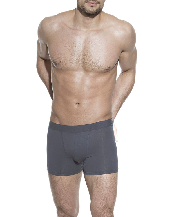 BOXER BRIEF IRON GREY