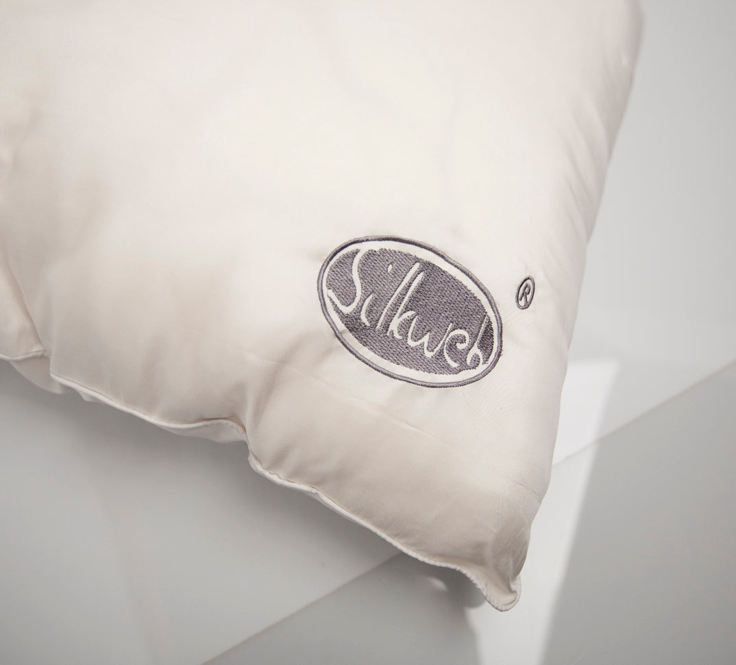 Pure Silk Pillow with silk case