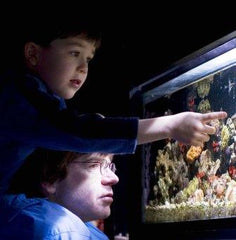 Father and son looking at fish