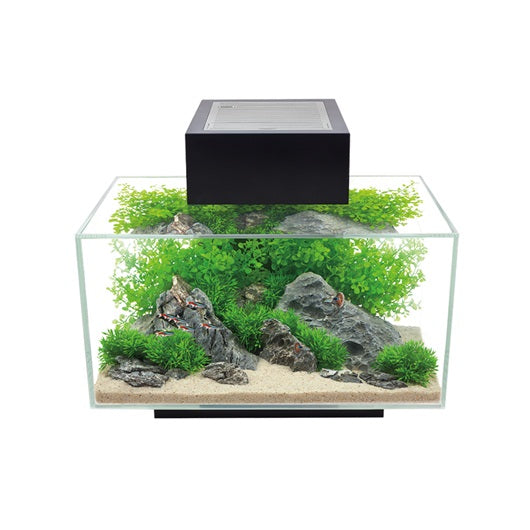 Fluval EDGE Kit 23L/6G (Black)