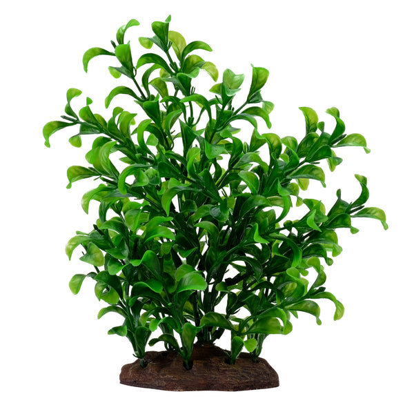 "Fluval Aqualife Plant Scapes Large Bacopa Plant 8""/20 cm"