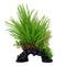 "Fluval Aqualife Deco Scapes Princess Pine Mix 12""/30.5cm"