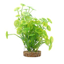 "Fluval Aqualife Plant Scapes Yellow-Green Lysimachia 8""/20cm"