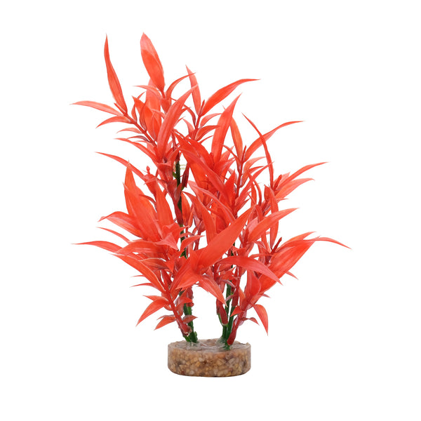 "Fluval Aqualife Plant Scapes Intense Red Hygrophila 8""/20cm"