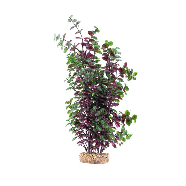 "Fluval Aqualife Plant Scapes Red Bacopa 14""/35.5cm"