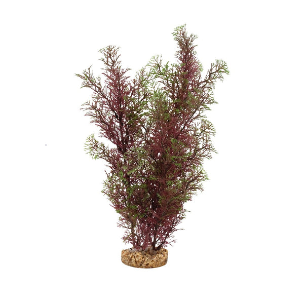 "Fluval Aqualife Plant Scapes Red/Green Foxtail 14""/35.5cm"