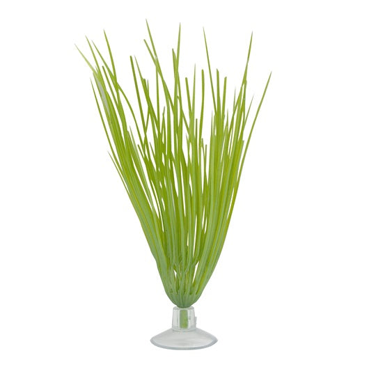 "Marina Betta Kit Hairgrass Plant/Suction Cup 5""/12.7cm"