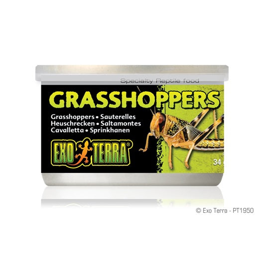 Exo Terra Canned Grasshoppers 34g/1.2oz