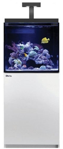 Red Sea Max E 170 White (170L 45G)