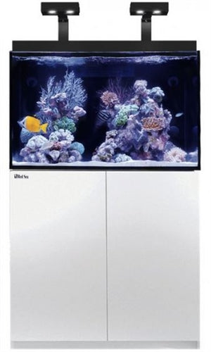Red Sea Max E 260 White (260L 69G)