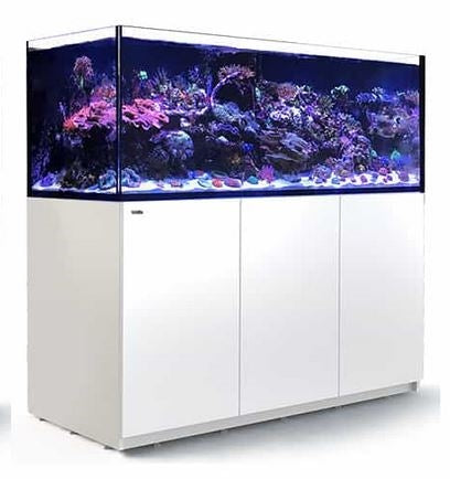 Red Sea Reefer XXL 625 White (625L/165G)