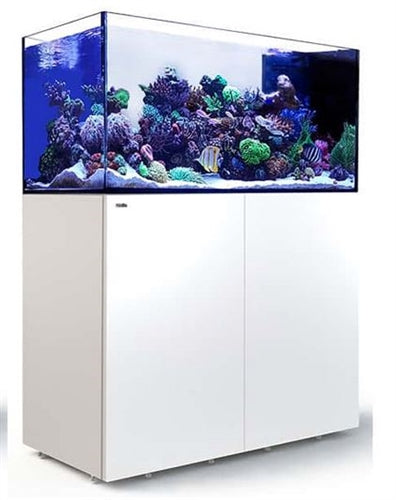 Red Sea Reefer Peninsula 500 White (500L 132 gal)