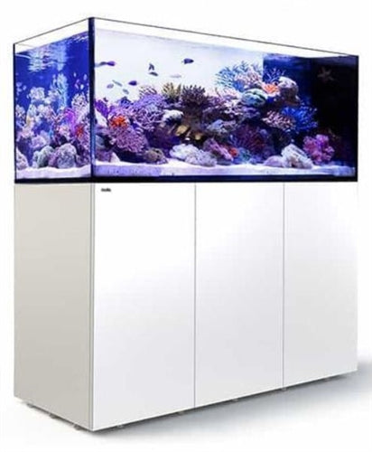 Red Sea Reefer Peninsula 650 White (662L 175 gal)