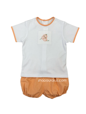 Auraluz 2pc Set...White knit top with embroidered pumpkins and gingham bloomer shorts. STORE EXCLUSIVE!