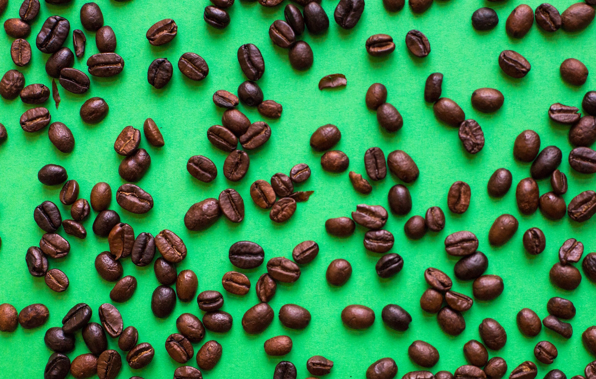 Arabica vs Robusta: Why we use 100% Organic Arabica Beans