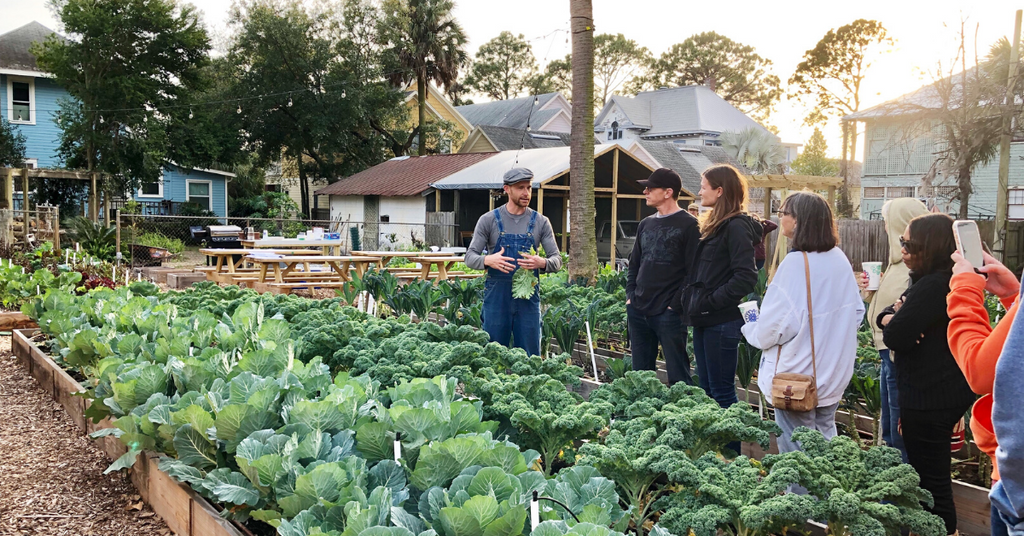 Grow Your Groceries - All the Basics Workshop (@OverallsFarm) 5-8pm, 3/21
