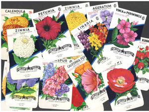 Vintage Seed Packets 1940-1980
