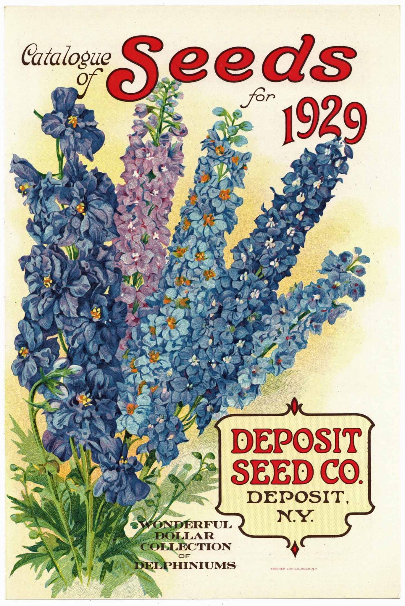 Vintage Seed Packets 1900-1940