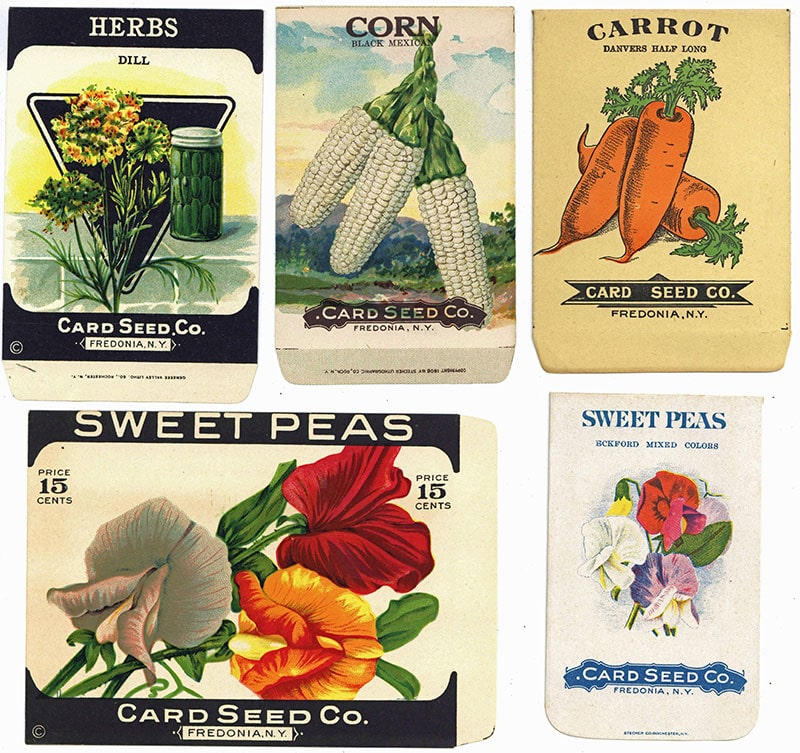 Card Seed Company packets