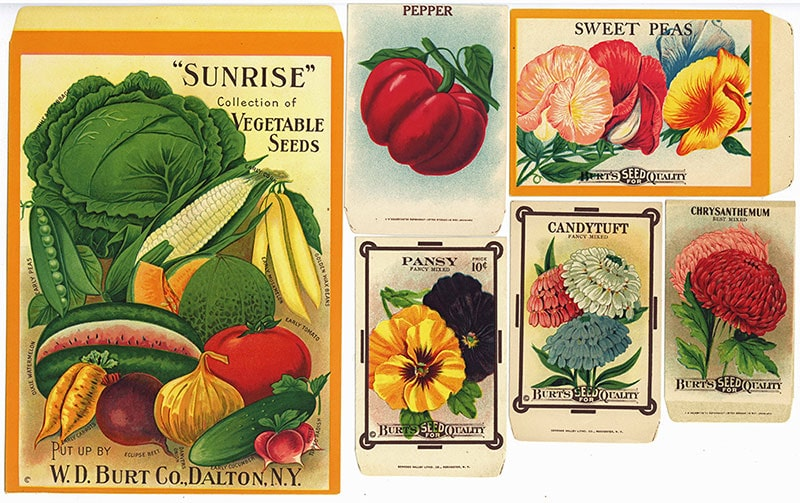 small sample of Burt's seed packets