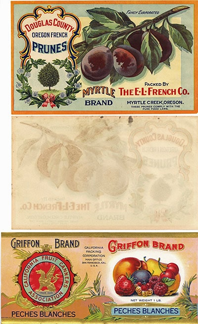 front and back of an early Myrtle prune label, also the front of an embossed Griffon brand with gold trim