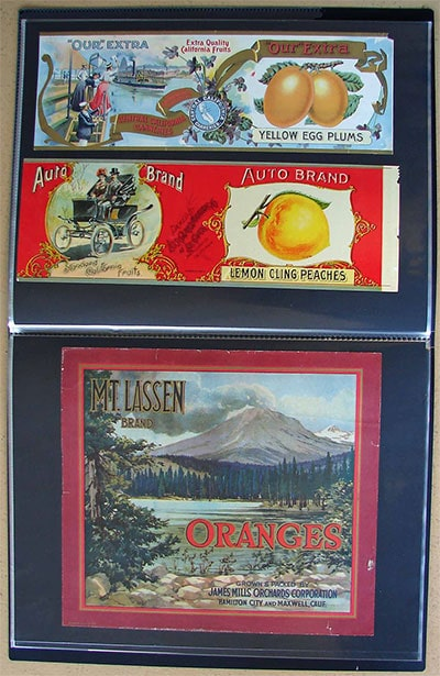 Itoya album Mt. Lassen citrus label
