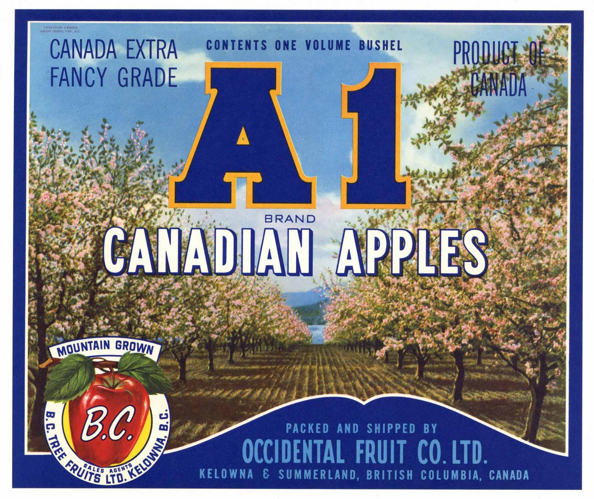 A1 Brand Vintage Apple Crate Label, blue (A001)