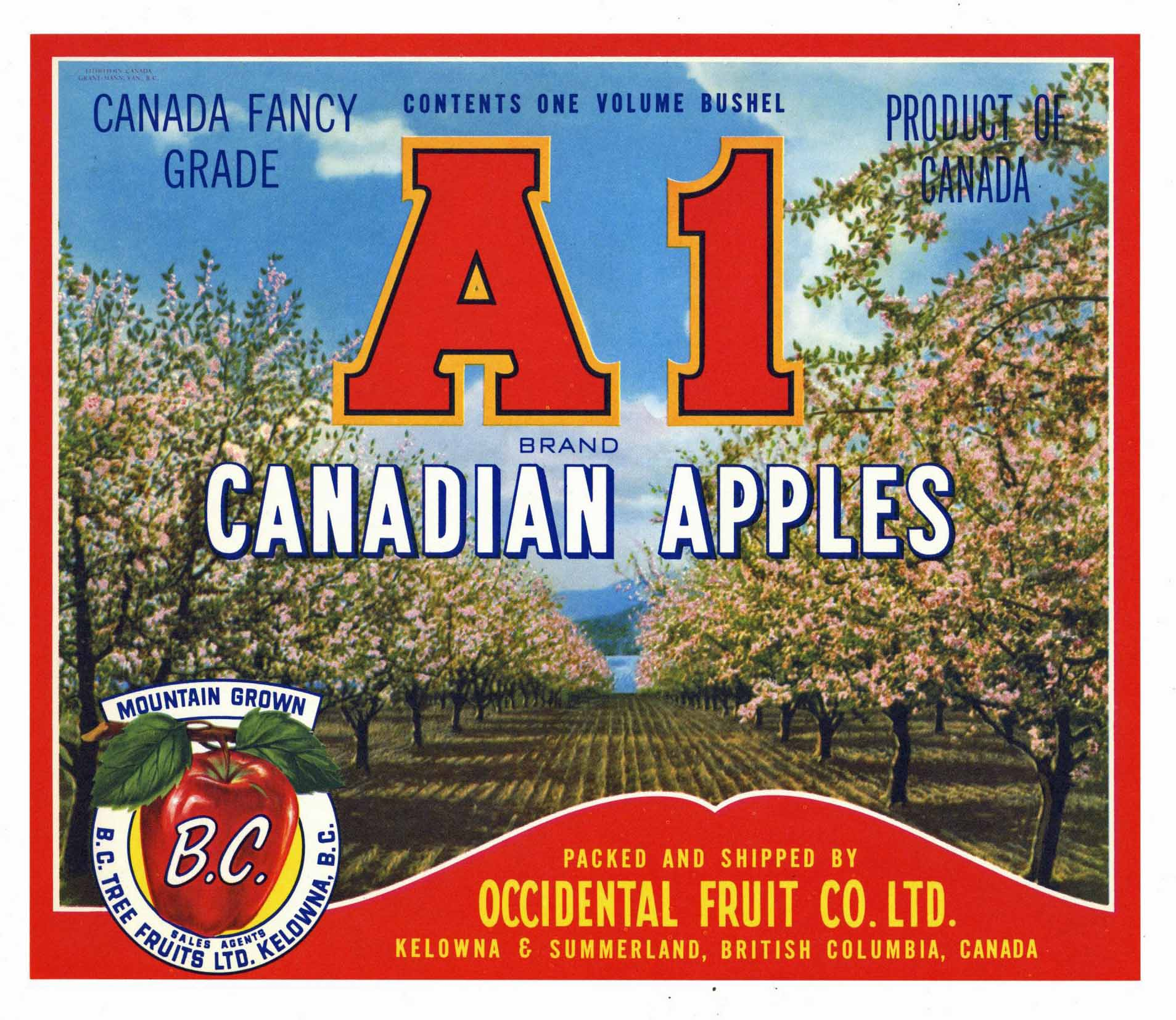 A1 Brand Vintage Apple Crate Label, red (A002)