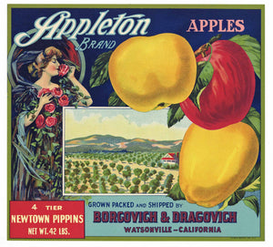 Appleton Brand Vintage Watsonville Apple Crate Label