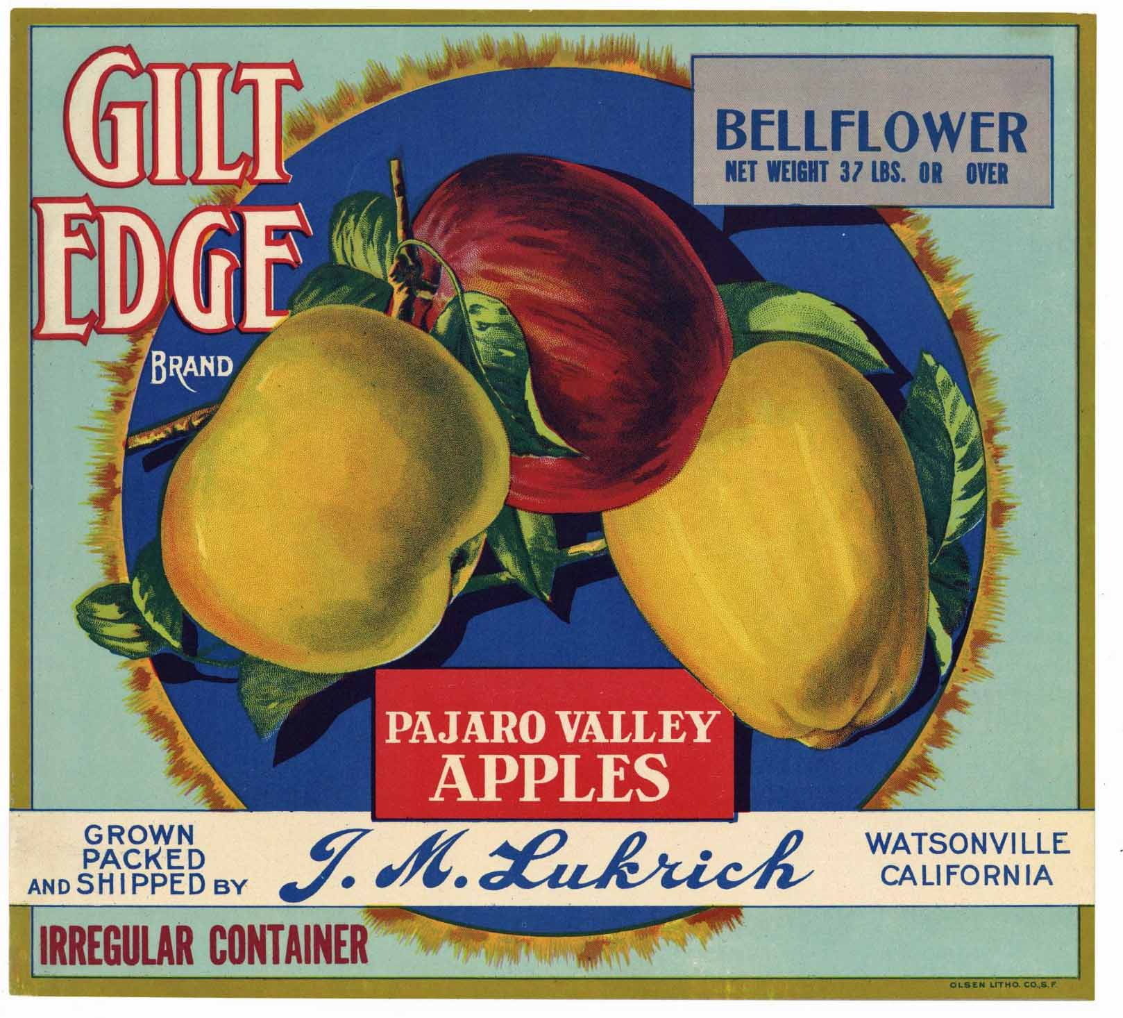 Gilt Edge Brand Vintage Watsonville Apple Crate Label