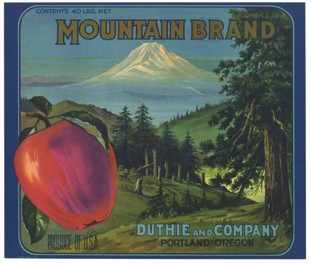 Mountain Brand Vintage Oregon Apple Crate Label 40lb