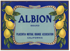 ALBION Brand Vintage Lemon Crate Label (L002)