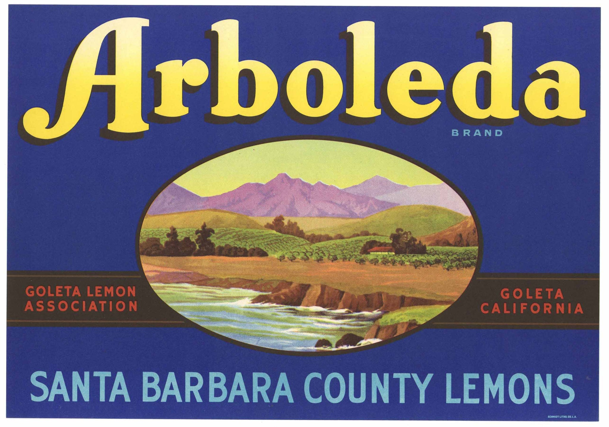Arbodela Brand Vintage Santa Barbara County Lemon Crate Label