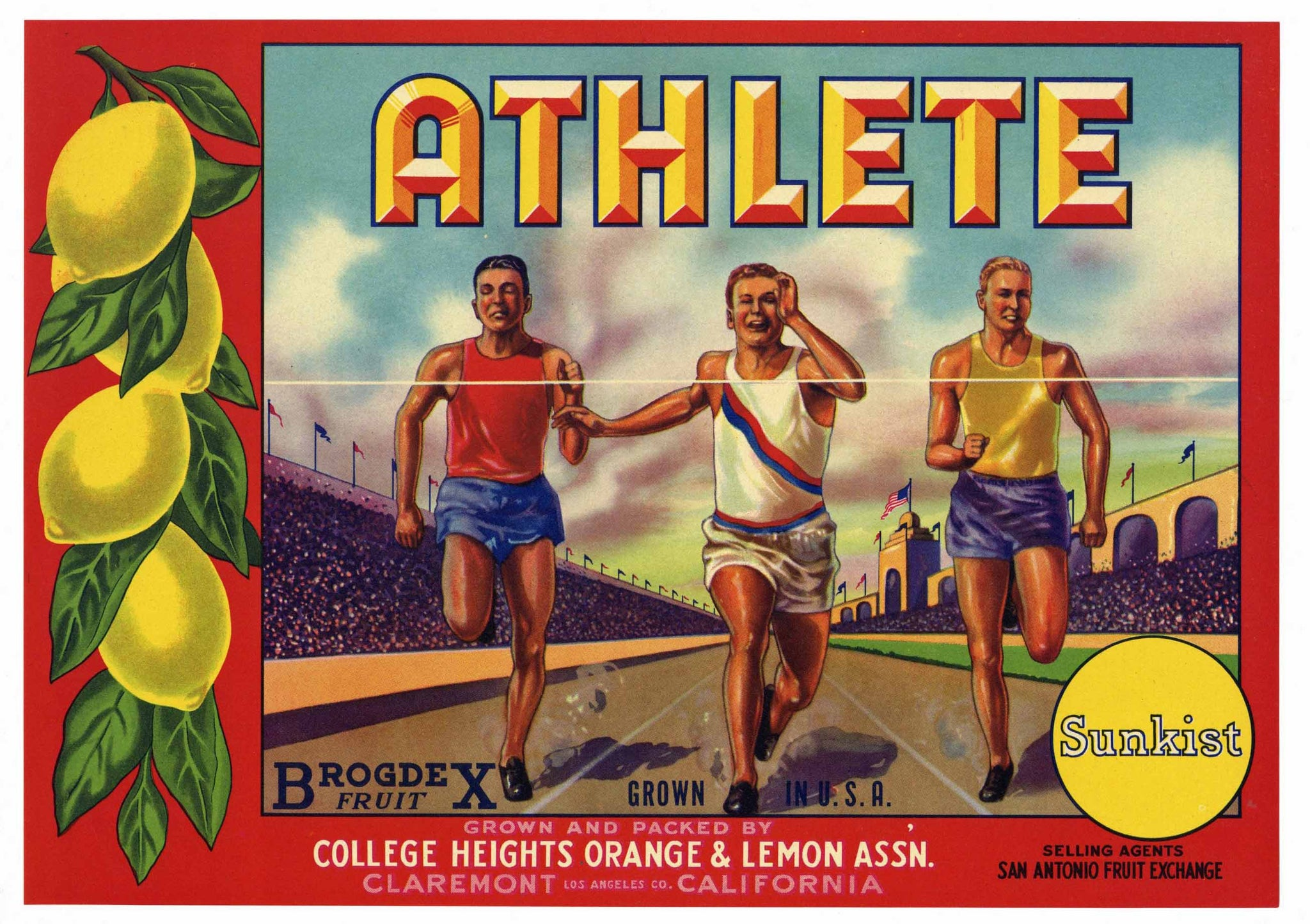 Athlete Brand Vintage Claremont Lemon Crate Label
