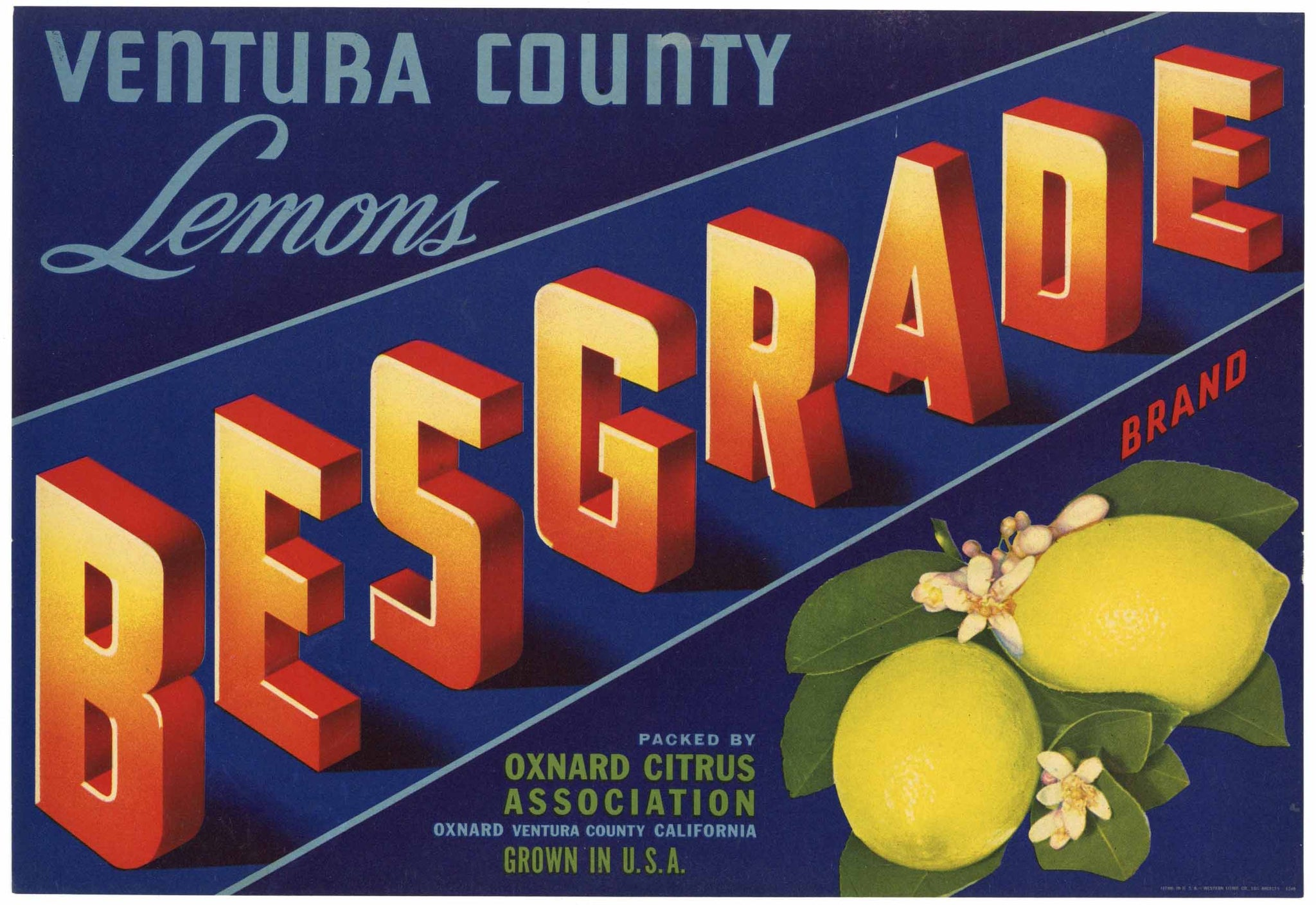 Besgrade Brand Vintage Oxnard Lemon Crate Label