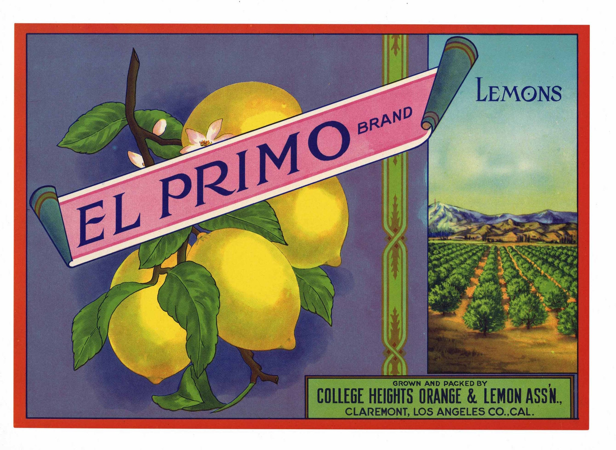 El Primo Brand Vintage Claremont Lemon Crate Label