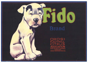 Fido Brand Vintage Tulare County Lemon Crate Label