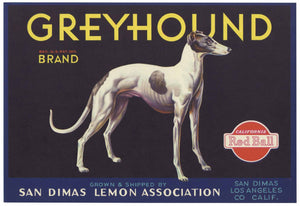 Greyhound Brand Vintage San Dimas Lemon Crate Label