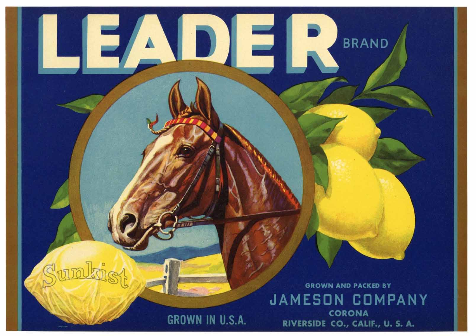 Leader Brand Vintage Corona Lemon Crate Label