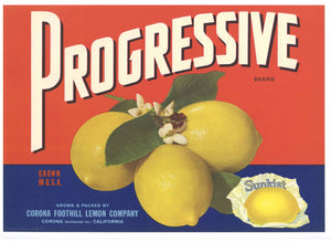 Progressive Brand Vintage Corona Lemon Crate Label