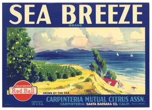 Sea Breeze Brand Vintage Carpinteria California Lemon Crate Label