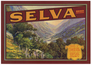 Selva Brand Vintage Fillmore California Lemon Crate Label