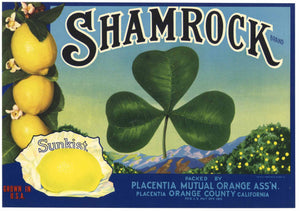 Shamrock Brand Vintage Placentia California Lemon Crate Label