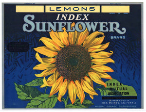 Sunflower Brand Vintage La Habra California Lemon Crate Label