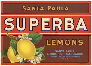 Superba Brand Vintage Santa Paula Lemon Crate Label
