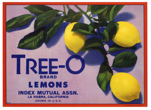 Tree-O Brand Vintage La Habra California Lemon Crate Label