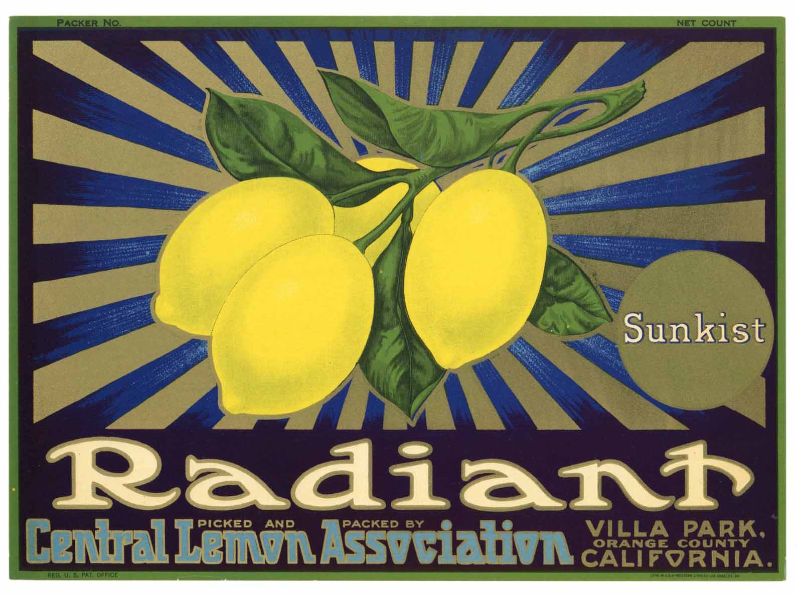 Radiant Brand Vintage Villa Park Lemon Crate Label