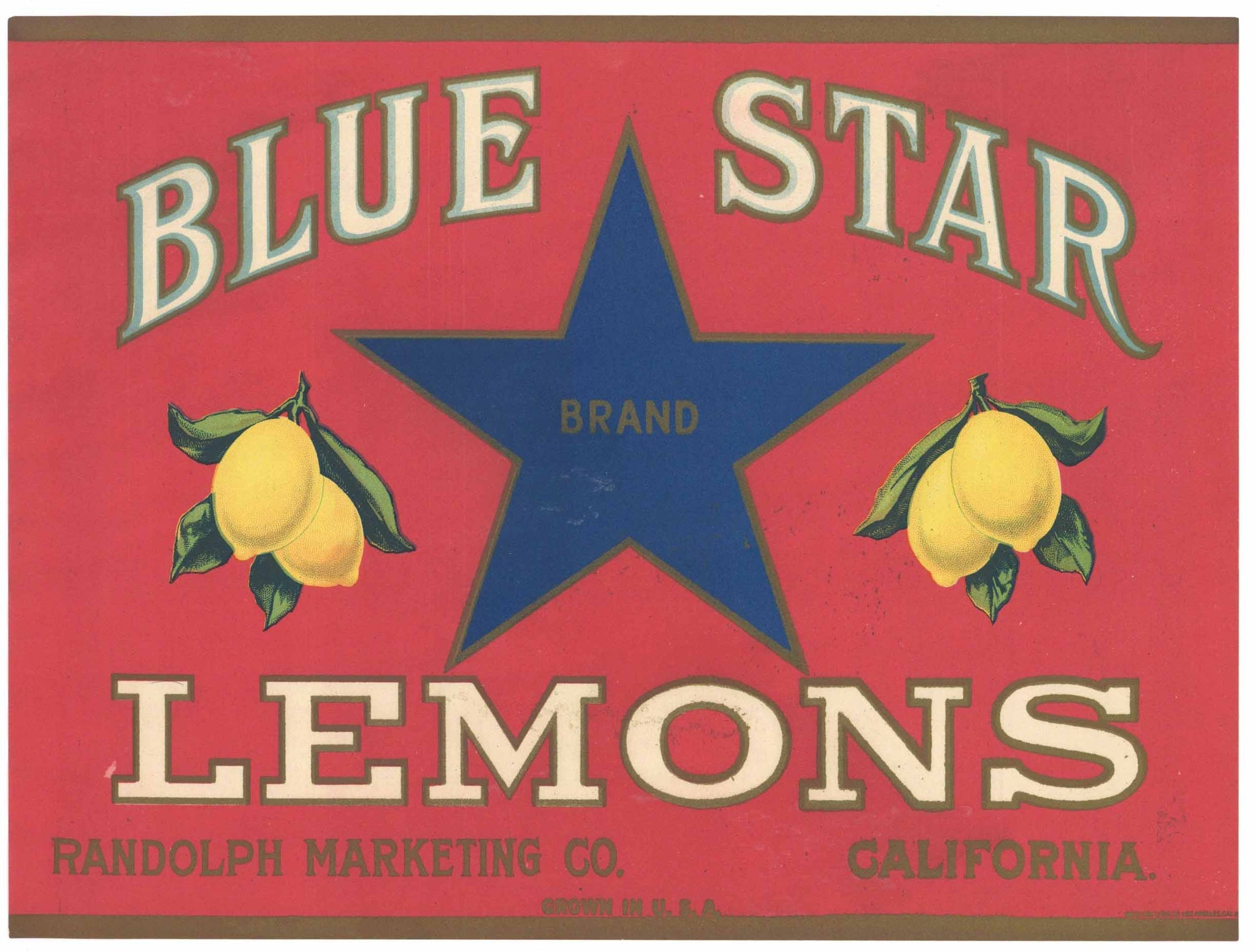 Blue Star Brand Vintage Randolph Marketing Lemon Crate Label